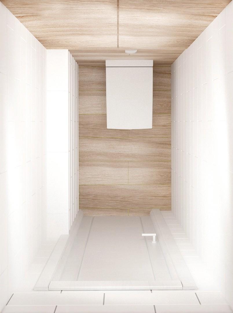 Визуализация санузла 2 кв.м в светлых тонах, унитаз, шкаф под бойлер, керамический гранит, дверь